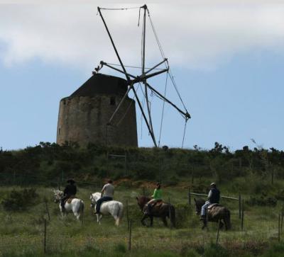Centro Hípico Quinta dos Pobrais