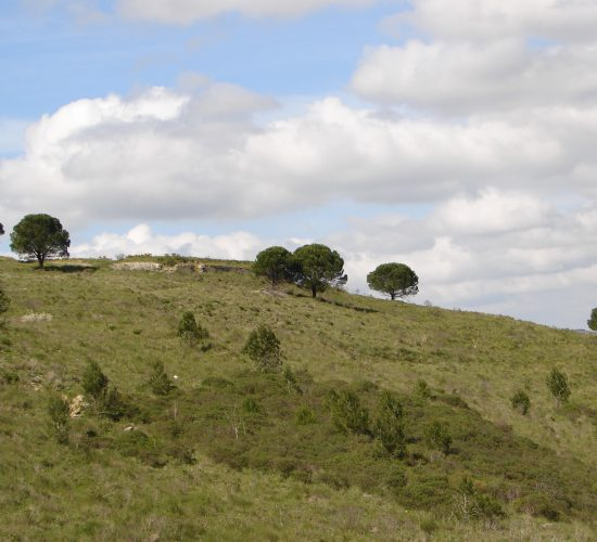 Forte 40 – Forte da Serra da Aguieira
